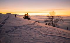 Sunset (Hegglin Dani) Tags: zug zugerberg sunset sonnenuntergang sun sonne schweiz switzerland snow schnee nebelmeer nebel fog seaoffog afterglow abendrot abendstimmung eveningmood
