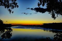 Easterly winds (Dreaming of the Sea) Tags: sky sunset bluesky sliderssunday nikon tamronsp2470mmf28divcusd nikond7200 burnettriver bundaberg queensland australia gumtrees reflections clouds birds water hss