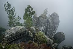 View into the Nirvana.... (Uwe Kögler) Tags: saxony sachsen sächsischeschweiz felsen fog nebel herbst elbsandsteingebirge bastei deutschland germany wehlgrund