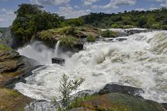 Murchison Falls (Explored 18/2/2109) (xhunter83) Tags: uganda murchison murchisonfalls water landscape falls
