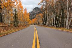 Castle Creek Road - Near Aspen, Colorado (russ david) Tags: castle creek road near aspen co colorado 2018 landscape fall autumn travel october