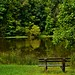 A Park Bench Allowed Me to Sit and Contemplate the Mysteries of a World Around (Cuyahoga Valley National Park)