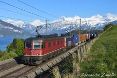 Re 6/6 11670 & Re 420 346, Einigen (CH) (Alexandre Zanello) Tags: re66 re620 re420 re44 ii slm bbc sbb cff ffs cargo international einigen berneroberland thunersee eiger mönch jungfrau alpes alpen alpi alps suisse schweiz svizzera svizra switzerland