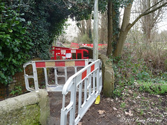 March 5th, 2019 Footpath closed (karenblakeman) Tags: caversham uk hillsmeadow footpath trees environmentagency floodalleviationscheme 2019pad reading berkshire march 2019