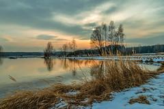 Wintertage  (21) (berndtolksdorf1) Tags: deutschland thüringen jahreszeit winter teich wasser schnee bäume gras himmel lichtstimmung outdoor