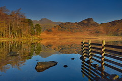 Mirrored perfection (images@twiston) Tags: bleatarn langdales goldenhour scotspine tarn fence golden rocks stones boulders lake cumbria lakedistrict lakeland thelakes nationalpark nationaltrust fell fells cumbrian mountains landscape imagestwiston countryside mountain still water reflection reflections morning mirror blue englishlakedistrict lakes thelakedistrict reflected waterreflections dawn calm serene stupidoclock langdalepikes sidepike lingmoorfell pikeoblisco pikes greatlangdale littlelangdale unesco worldheritagesite nisi gnd neutraldensity grad