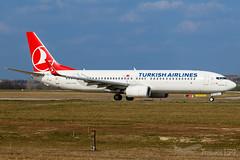 "TC-JVZ   Turkish Airlines (""6000th Boeing Next Generation"" sticker)   Boeing 737-8F2   BUD/LHBP (Tushka154) Tags: hungary specialscheme 7378f2 737nextgeneration ferihegy budapest tcjvz 6000thboeingnextgeneration 737800 boeing 737 spotter turkishairlines 737ng aircraft airplane avgeek aviation aviationphotography boeing737 boeing737nextgeneration boeing737ng budapestairport lhbp lisztferencinternationalairport planespotter planespotting spotting turkish"