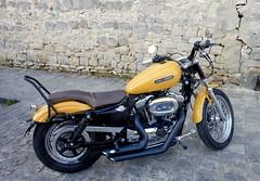 Harley Davidson (andrébordas) Tags: moto motocyclette bike harley jaune yellow