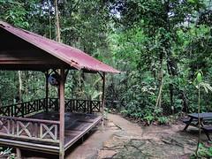 Forest Reserve Lake Jalan Merbah 10/1, Kota Damansara, 47810 Petaling Jaya, Selangor https://maps.app.goo.gl/AJnjC  https://foursquare.com/soonlung81  https://maps.app.goo.gl/CPWsi  https://www.instagram.com/s/aGlnaGxpZ2h0OjE3OTg5MjE3NzM0MjEzMDE2/?utm_sou (soonlung81) Tags: naturel reizen semester 여행 viaggio naturale malaysia vakantie holiday asian 馬來西亞 การเดินทาง طبيعة природа natuurlijk 휴일 trip natuur fiesta vacances سفر 自然 ธรรมชาติ 亞洲 путешествие natural nature alam traveling 度假 旅行 大自然 voyage عطلة праздник vacanza natürlich resa วันหยุด asia ホリデー 자연 viaje reise urlaub travel
