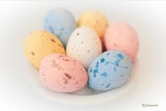 PASTEL (Jehanmi) Tags: œufs pâques macrophotography photography creativeartphotography light lighting hmm eggs nikon pastel macromondays macro
