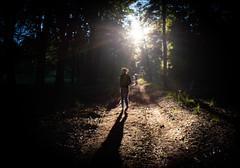 HogeVeluwe_zonsopkomst (Tim MLDR) Tags: 2018 hogeveluwe veluwe forest nature woods sunrise sunlight contrast