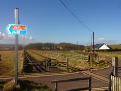 Giant's Causeway Railway (ee20213) Tags: countyantrim northernireland giantscauseway gcbr narrowgauge levelcrossing giantscausewaybushmillsrailway