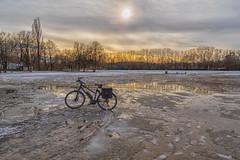 2019 Ride 180: Day 17, February 9 (suzanne~) Tags: bike bicycle 2019bike180 olympiapark munich bavaria germany winter snow melt slush tree