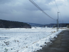 back to cold season? (murozo) Tags: cold warm spring snow cloud pole rice field nikaho akita japan road 春 雪 田圃 雲 電柱 にかほ 秋田 日本 道