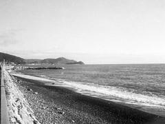 080419002 (francescoccia) Tags: analogue analog francescoccia 110 110film pocketfilm lomography lomo orca bn bw blackwhite pentaxauto110 pentax reflex sea beach lavagna