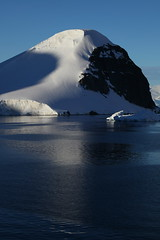 IMG_6854 (y.awanohara) Tags: cuvervilleisland cuverville antarctica antarcticpeninsula icebergs glaciers blue january2019
