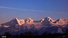 Alpen (mluuk) Tags: 2018 alpen berge abendrot berneroberland eiger jungfrau mönch schweiz