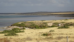 0334 Streaky Bay (roving_spirits) Tags: australia australien australie southaustralia eyrepeninsula