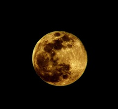 Supermoon (rob_ello) Tags: luna moon natura nature canon d40 gold