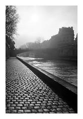 Backlight (madras91) Tags: nb noiretblanc bw blackandwhite monochrome film tx400 trix kodak backlighting paris landscape cityscape leicam2 leica summicron35mmf2v3 35mm summicron
