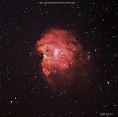 NGC 2174 The Monkey Head Nebula (NarrowBand Ha:sG:OIII Image) (Ralph Smyth) Tags: orion caldwell49 gemini ngc ngc2174 nebula ha oiii skywatcher zwo1600mm zwo