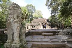 Angkor_Ta Prohm_2014_09