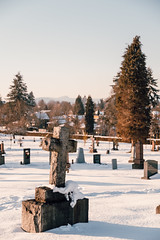 Vancouver-Winter-Walks-14 (_futurelandscapes_) Tags: vancouver winter snow cold february mountainview cemetery trees arboretum sunset evening graves sunny blue white vintage
