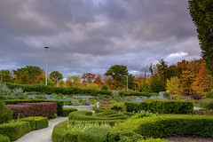 Sunset in Edwards Gardens DSCT8183 (Alleung555) Tags: sunset edwards gardens fall colours foliage cloudy day
