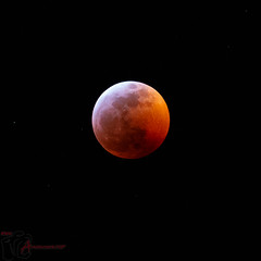 01202019 2397A (Anarchivist Digital Photography) Tags: bloodmoon northamerica colorado 2019 anarchivistdigitalphotography canon camera m3
