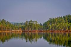 Lake morning (Klas-Herman Lundgren) Tags: dalarna sweden gimmen autumn höst oktober october trees colors lake sjö höstfärger stillasjö water morning morgon sifferbo se