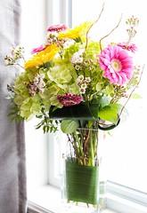 Birthday Flowers (Karen_Chappell) Tags: flowers floral nature daisy pink yellow bouquet green arrangement white stilllife