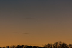mercury in the evening sky / @ 300 mm / 2019-02-14 (astrofreak81) Tags: planet merkur mercury rare constellation evening sky astrophotos year 2019 sun stars tree light night dark konjunktion konstellation dresden 20190214 sylviomüller sylvio müller astrofreak81