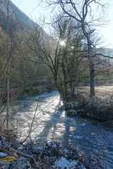 Trail along L'Eau Morte @ Doussard @ Walk in Doussard, Faverges, Giez & Lathuile (*_*) Tags: winter hiver 2019 february europe france hautesavoie 74 annecy savoie doussard sourcesdulacdannecy leaumorte river morning matin