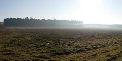 Field in the Battle area in the mist. (dave p brecks) Tags: brecklandlandscape mistymorning panasonicdmcg80 olympus918