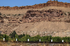 Orchards in the Desert - Palisade, Colorado (BeerAndLoathing) Tags: 2018 pallisade usa palisade roadtrip desert color 77d contrast colorado trip summer canon orchard august pallisadetrip canoneos77d