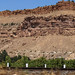 Orchards in the Desert - Palisade, Colorado