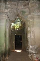 Angkor_Ta Prohm_2014_40