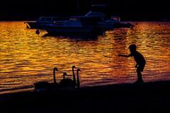 P2023909 Claremont Dalkieth Sunset (Dave Curtis) Tags: claremont dalkeith sunset swans boy feeding perth australia dalkieth em5 omd olympus places wa westernaustralia
