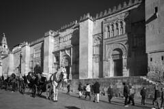 Exterior de la mezquita de Córdoba (RodionR) Tags: bn bw blancoynegro biancoenero noiretblanc monocromo monotone monochrome mezquita mosque córdoba streetphotograph cochedecaballos