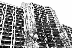 Rotterdam architecture. (PeteMartin) Tags: architecture bw infrared rotterdam tree urban