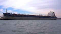 118 -1crpvib1stpfwb (citatus) Tags: bulk carrier algoma discovery moored eastern gap toronto canada harbour harbor spring morning 2019 pentax k3 ii