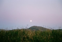 (mari-ann curtis) Tags: 35mm colour summer sunshine light grotle norway coast purple moon mountain sunrise blurry sky clouds nostalgia travel film 2017