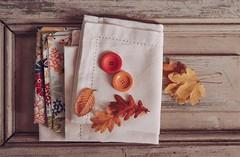 Colores de otoño... (Irene Carbonell) Tags: otoño colores coloresdeotoño hojasdeotoño vintagelove vintage 50mm nikon