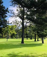 Trees (jglsongs) Tags: melbourne australia fitzroygardens