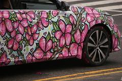 IMG_8902 (lightandshadow1253) Tags: washington dc cherry blossom parade cherryblossomparade2019 washingtondc