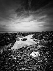 Rock Pool - 52/52 2018 (amipal) Tags: beach chalk england gb greatbritain lowtide reflections rockpool saltdean sea seafront seaweed sussex tide uk undercliff unitedkingdom water photoaweek photo52