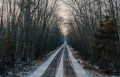 St. John's Road - Saint Croix State Park in Winter (Tony Webster) Tags: december minnesota saintcroixstatepark stcroixstatepark dirtroad road snow statepark trees winter crosbytownship unitedstates us