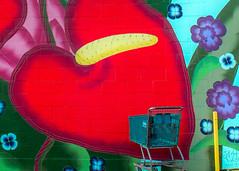 Anthurium Shopping Art (mutrock) Tags: anthurium flowers red art painting cart shoppingcart hilo hawaii hawaiianislands usa unitedstates 2018