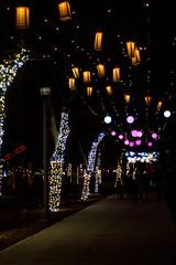 brightlightswindsor1_dec2018 (YenC) Tags: brightlights christmas lights windsor jacksonpark