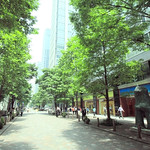 街路空間の写真